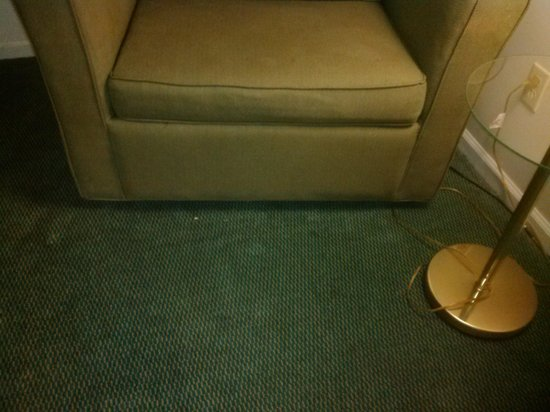 Crossland Economy Studios - Lexington - Patchen Village: Stains on furniture and carpet