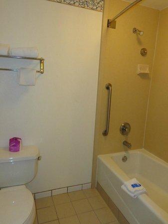 Gateway Inn and Suites Hotel: Bathroom