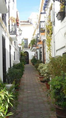 Hotel San Cristobal: Old Town