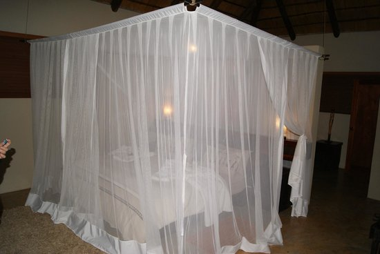 Naledi Game Lodges : Our bed