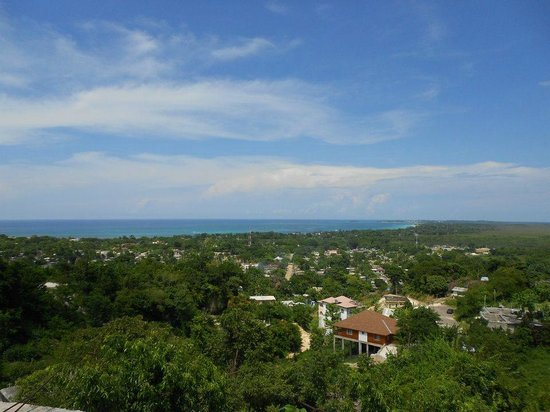 Negril Tree House Resort : View from one of our sight seeing walks
