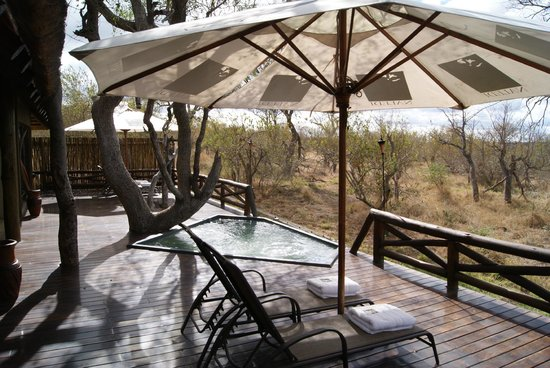 Naledi Game Lodges : The terrace of leadwood suite