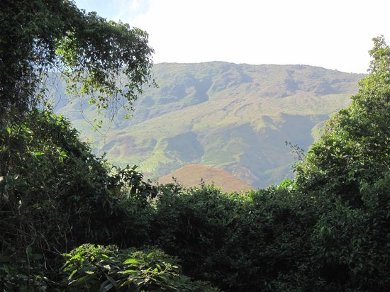 Buea, Cameroon: View of Mount Cameroon
