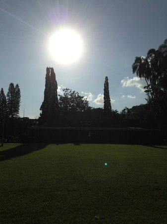 Karen Blixen Museum: the view