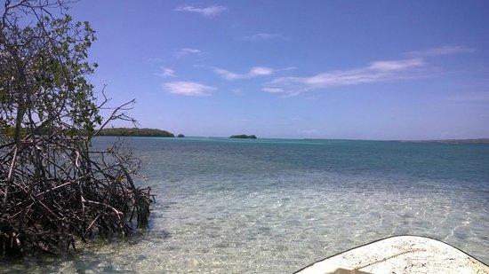 Parguera Water Sports and Adventures : La Parguera, Puerto Rico