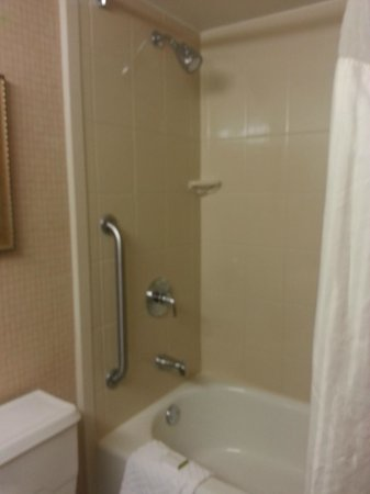 DoubleTree by Hilton Grand Junction: Shower tub
