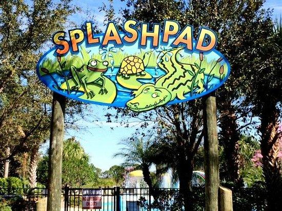 Splash Pad Picture Of Bahama Bay Resort Orlando By