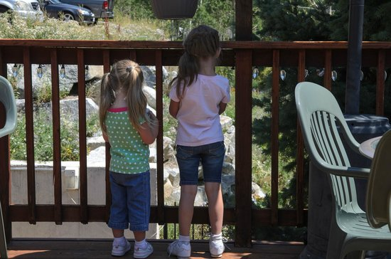 Silver Fork Lodge & Restaurant: Eat out on the patio if the weather is nice