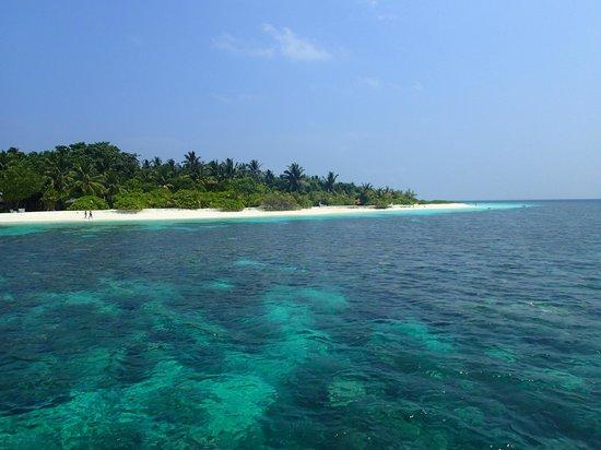 Velidhu Island Resort : Strand