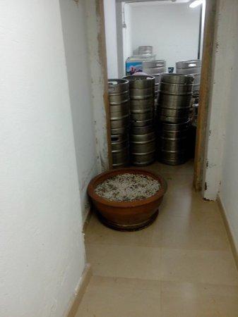 R2 Bahia Playa: Réserve des cuisines face à l'ascenceur