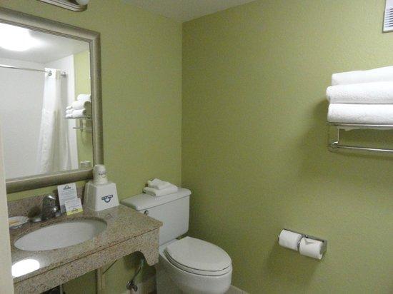 Days Inn Baltimore Inner Harbor: Clean Bathroom