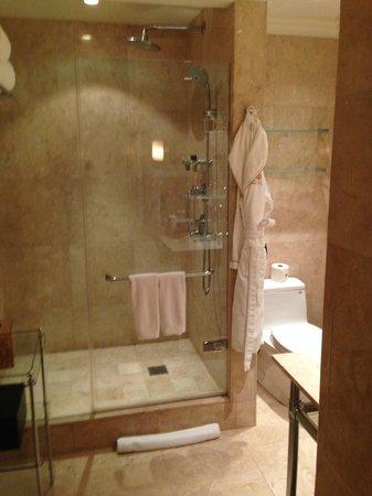 The Pierre, A Taj Hotel, New York: shower