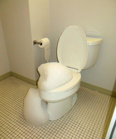 The Standard Downtown: Foaming and belching toilet