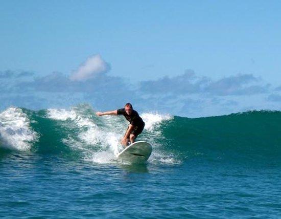 Gone Surfing Hawaii: Gone Surfing @Hawaii !