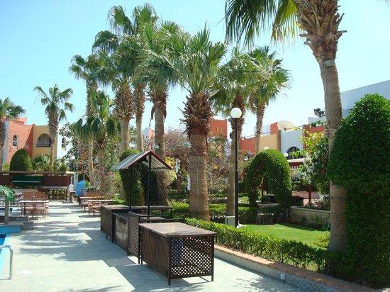 Arabia Azur Resort: ładne widoczki