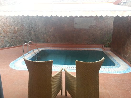 The Raviz Resort and Spa, Ashtamudi : The swimming pool in ur cottage? Unbelievable.