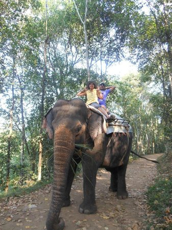 Elephant Junction - Day Tours: On the way