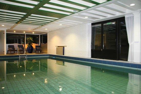 schwimmbad foto van hotel am berghang bad bentheim