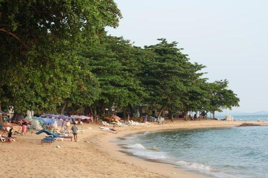 Royal Beach View Hotel : пляж в 5 минутах пешком из отеля
