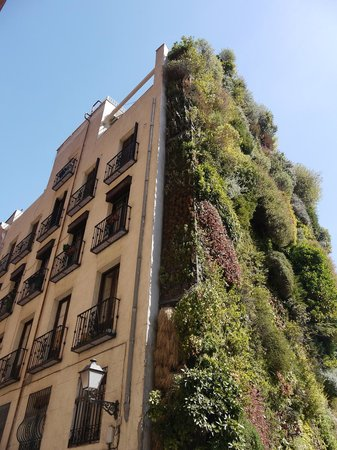 MadWay: Madrid wall garden