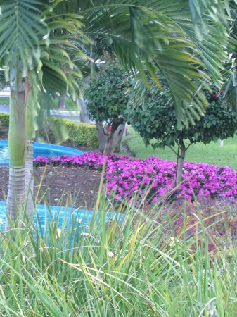 Wyndham Palm-Aire: Resort grounds