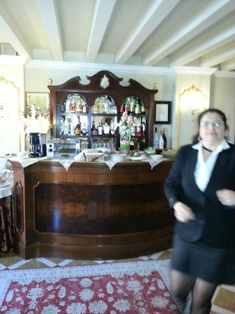 Hotel Canal Grande: bar area, and very helpful staff!