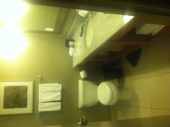 The Westin Las Vegas Hotel, Casino & Spa : Bathroom in Room 336