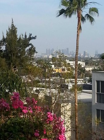Best Western Plus Sunset Plaza Hotel : View of Hollywood Hills from our balcony