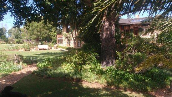 Narnia Farm Guest House: The main house through the trees