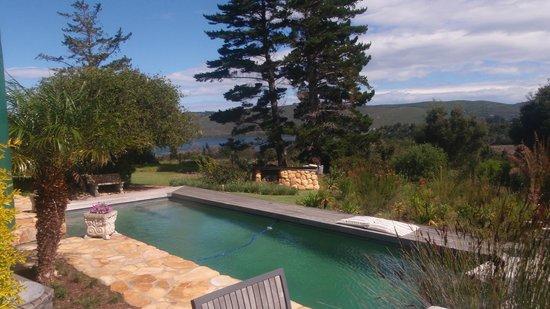 Narnia Farm Guest House: Pool