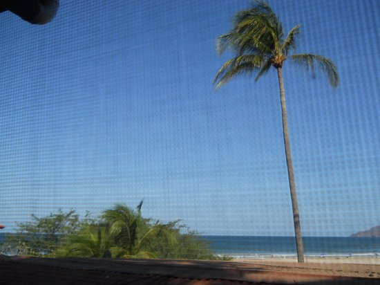 Witch's Rock Surf Camp: the general view from rooms #13 - #18