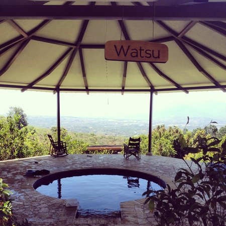 Pura Vida Retreat & Spa : Watsu with a view!