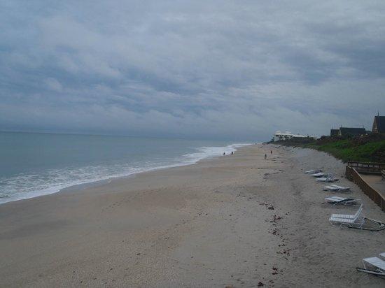 Disney's Vero Beach Resort : from boarwalk looking down the beach