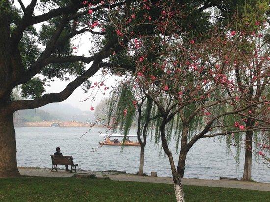 Dahua Hotel: lake area