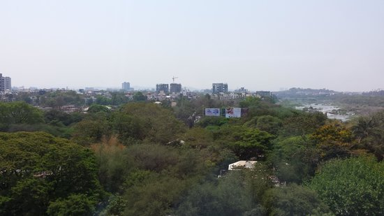 The Westin Pune Koregaon Park: view from my balcony