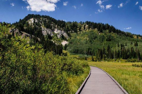Big Cottonwood Canyon: boardwalk around lake