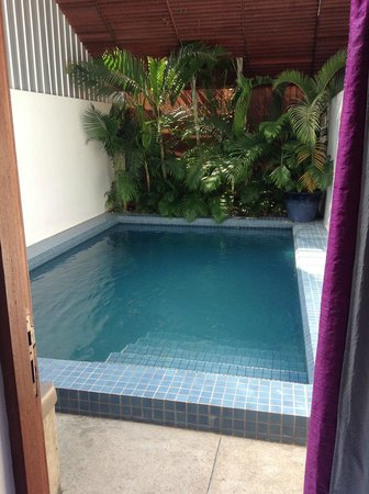Blue Lime: The private pool, accessible from the back of your room