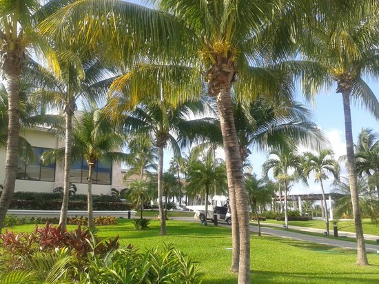 Moon Palace Cancun : Hotel