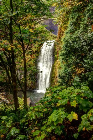 Columbia River Gorge National Scenic Area: Wondrous beauty everywhere you look.