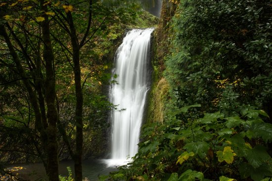 Columbia River Gorge National Scenic Area : Explore around each area for new points of view.