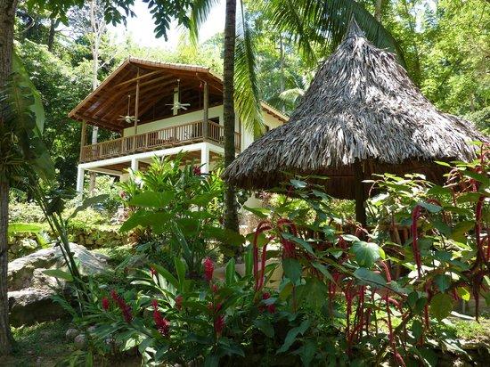 Villas Pico Bonito : La Catarata