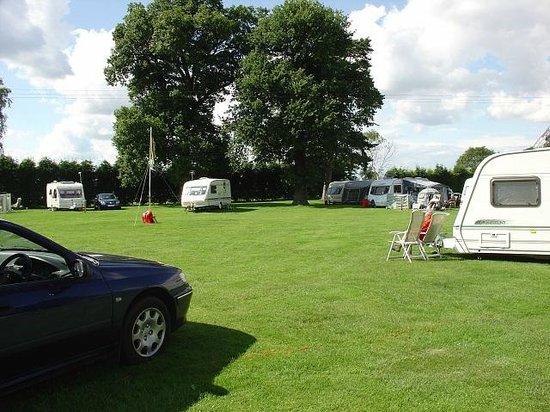 King's Lynn Caravan & Camping Park : Caravans
