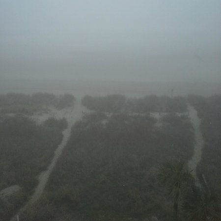 Best Western Ocean Sands Beach Resort: Super Foggy in March!