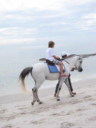 Hilton Hua Hin Resort & Spa: hose riding along the beach on the hotel property