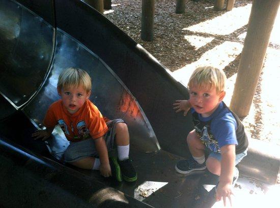 Veterans Park : The slide