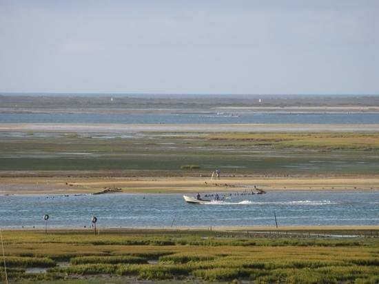Real Marina Hotel & Spa: low tide in Olhao