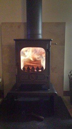 Wildside Highland Lodges : Argus wood burner