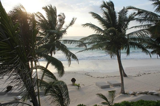 The Beach Tulum : Plage