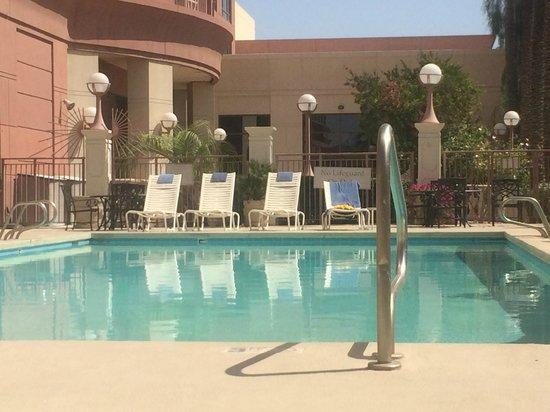 Phoenix Airport Marriott: Quiet swimming pool