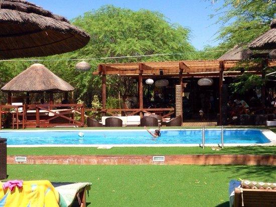 Carpe Diem: pool area